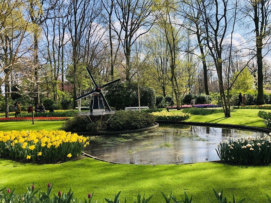 Keukenhof 2019 has ended - find other things to do in the area on north holland map, het loo palace map, van gogh museum map, limburg map, rijksmuseum map, hoek van holland map, utrecht map, randstad map, amersfoort map, den haag map, lisse holland map,
