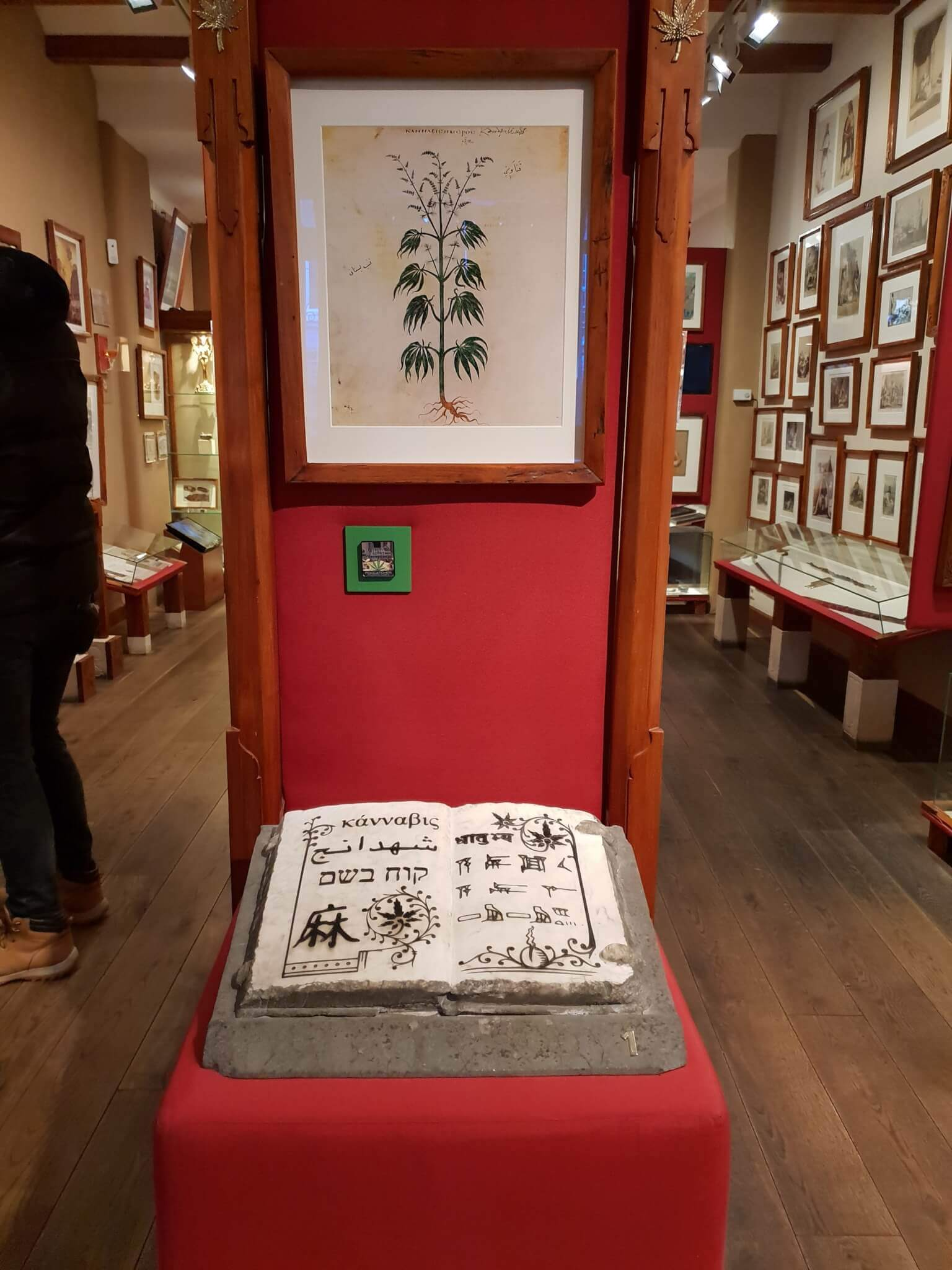 First written account of the marijuana plant in history at the Hash Marihuana Museum Amsterdam