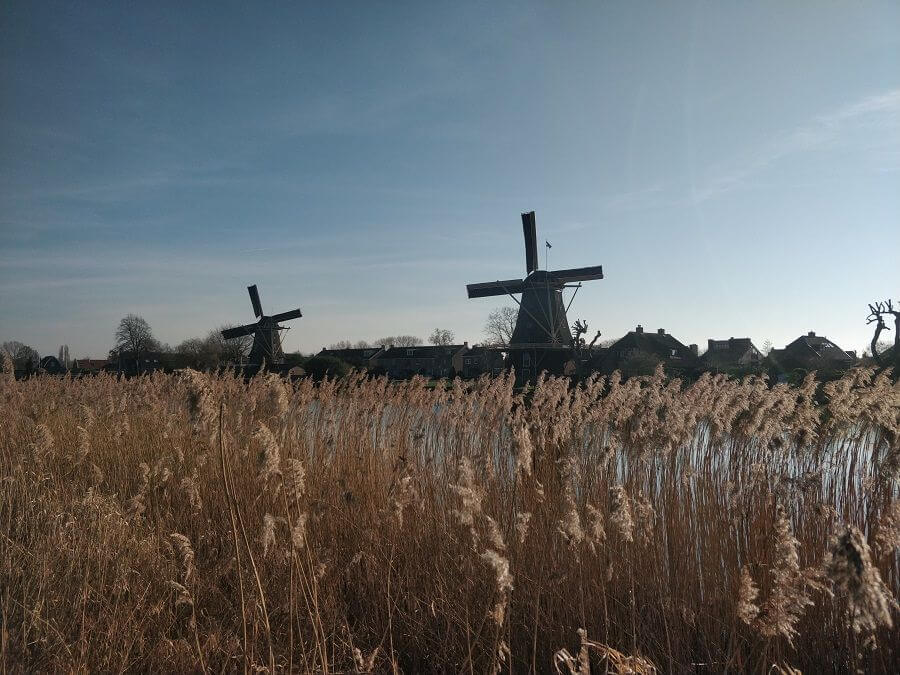"Two Dutch windmills in Weesp located on the ""Utrechtseweg"""