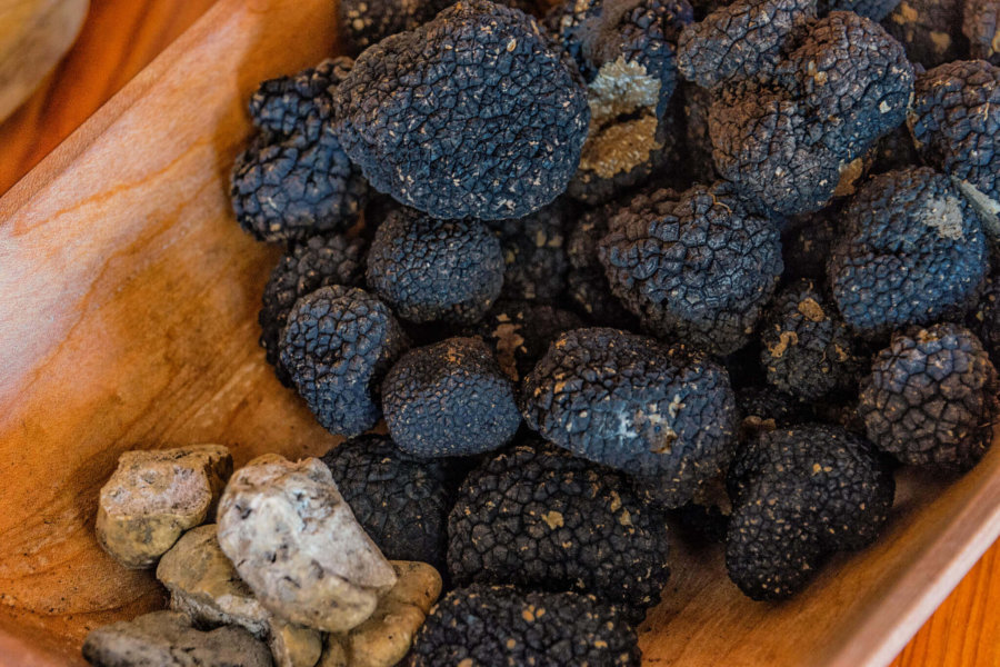 All you need to know about using truffles in Amsterdam